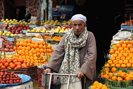 Egypt may replace Turkish fruit and vegetables to Russia.