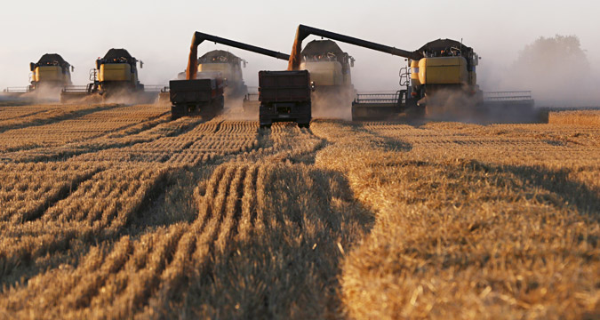 The total grain harvest amounted to 104.8 million tons in 2015.