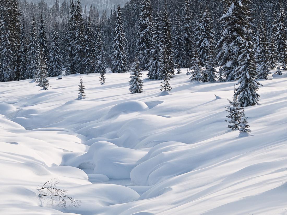 """Алтай, смятан за """"белите дробове"""" на планетата, е един от най-чистите региони в Русия. / Национален парк """"Ергаки""""."""