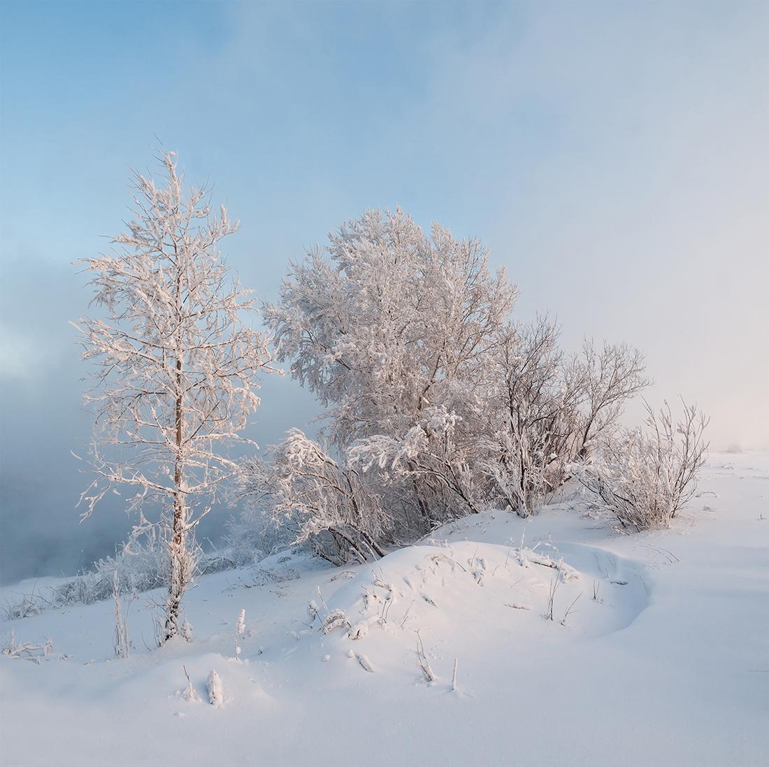 Езерата, горите и пустините на Алтайската република са великолепна дестинация за пътешествениците. / Предградията на Красноярск, р. Енисей.