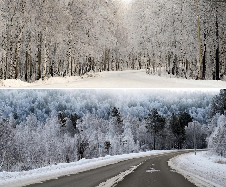 Hutan Salju. Hutan berselimut salju di sepanjang jalan menuju Danau Baikal, Jumat (26/12/14).  Jarak dari Kota Irkutsk ke titik terdekat Baikal berkisar 63 kilometer. Di sepanjang perjalanan menuju danau membentang  hutan, desa, dan lahan pertanian yang diselubungi salju.