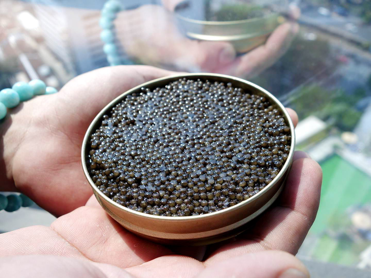In Thailand, the main consumers of sturgeon and black caviar are the members of the upper middle class.