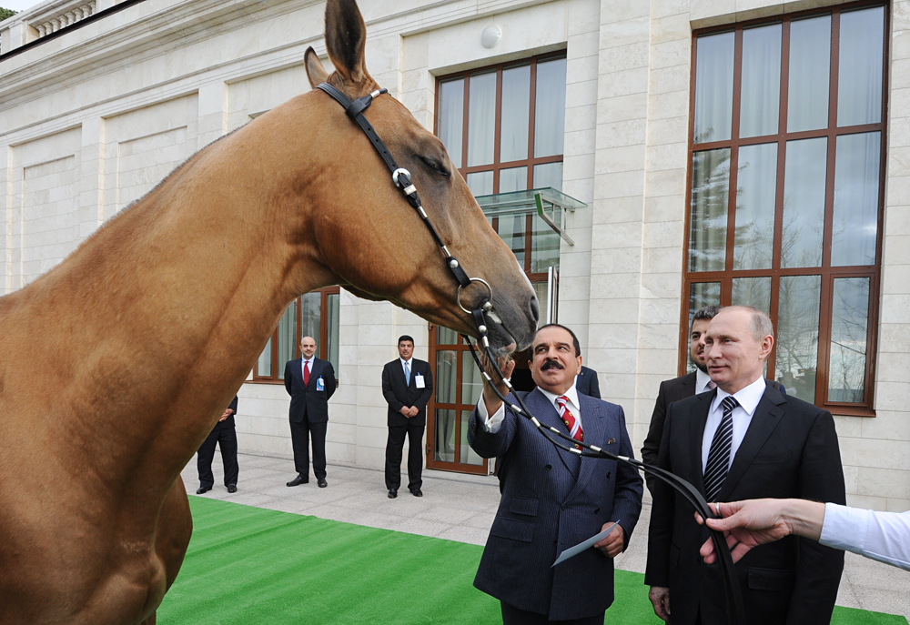 Russian President Vladimir Putin presents King Hamad bin Isa Al Khalifa of Bahrain with an Akhal-Teke horse called Khadzhibek during a meeting at Bocharov Ruchei residence, Feb. 8, 2016.