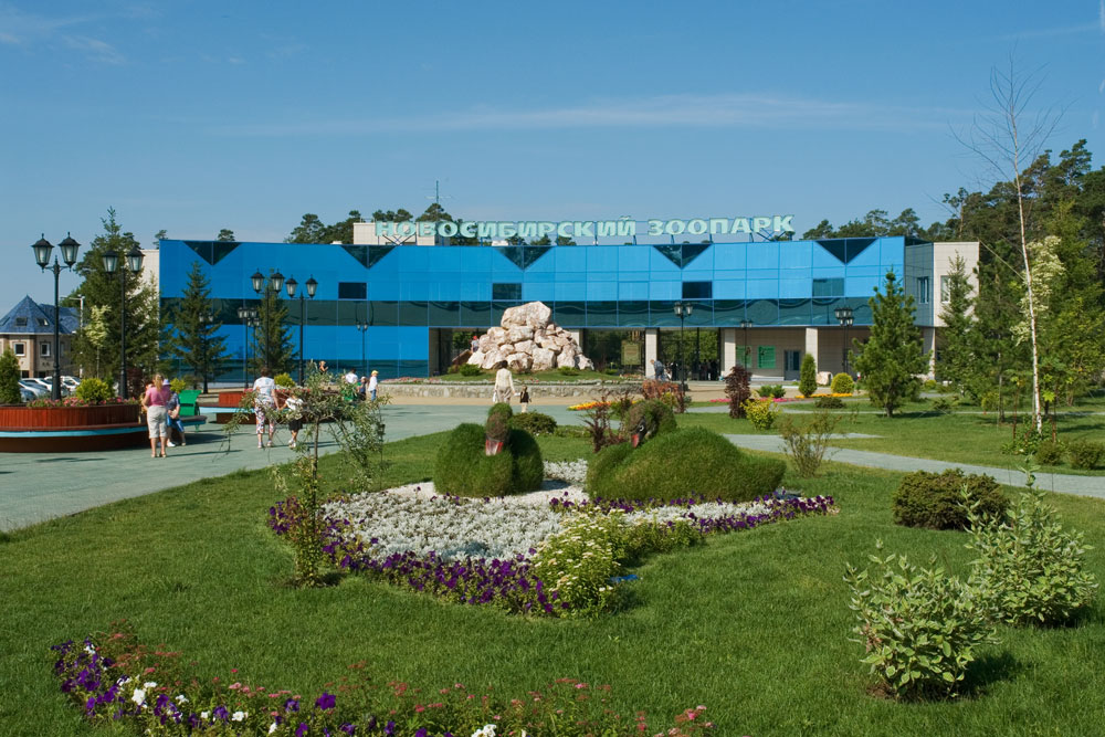 Novosibirsk Zoo in Western Siberia is one of Russia's largest (63 ha or 155 ac) and most populated wildlife parks.