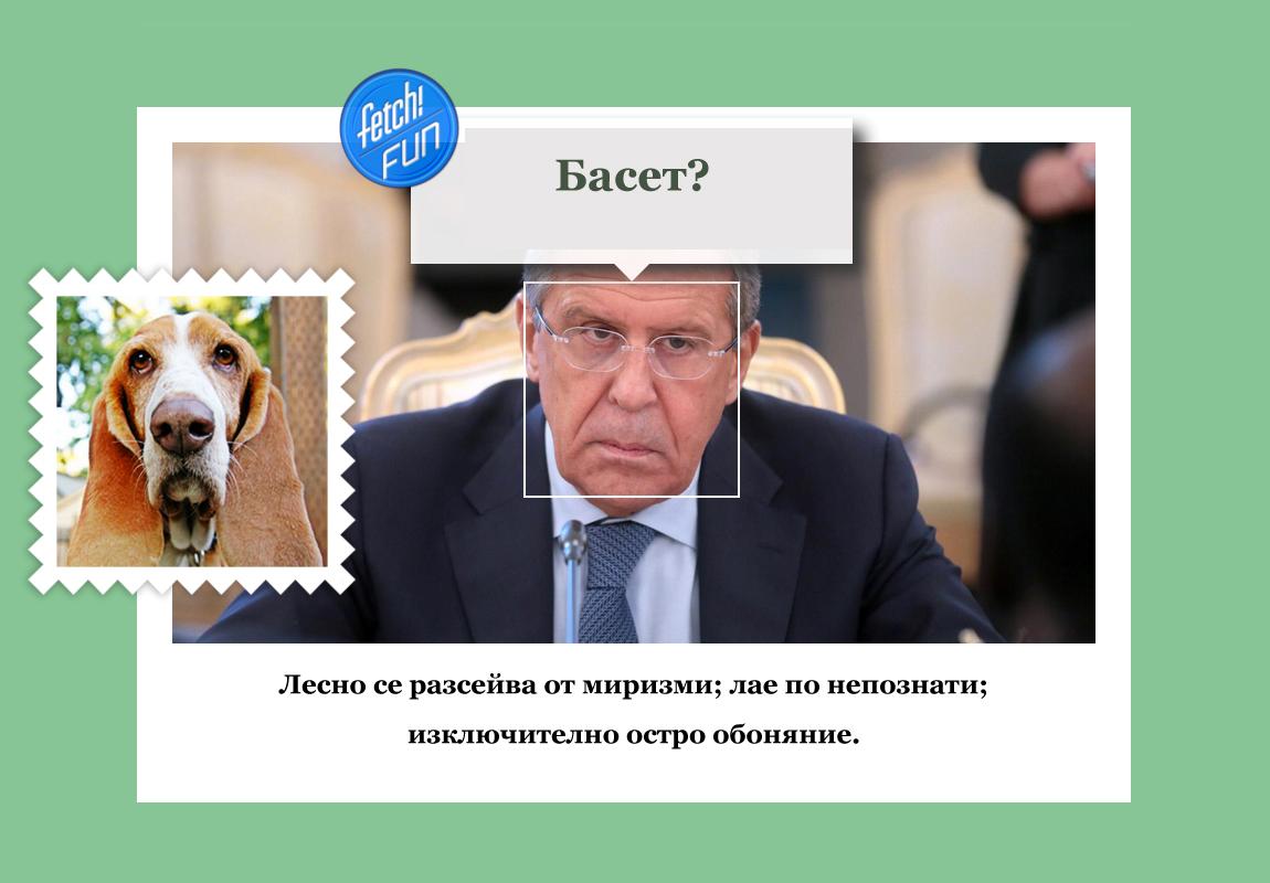 Сергей Лавров (руски дипломат и настоящ министър на външните работи на Русия) е басет.