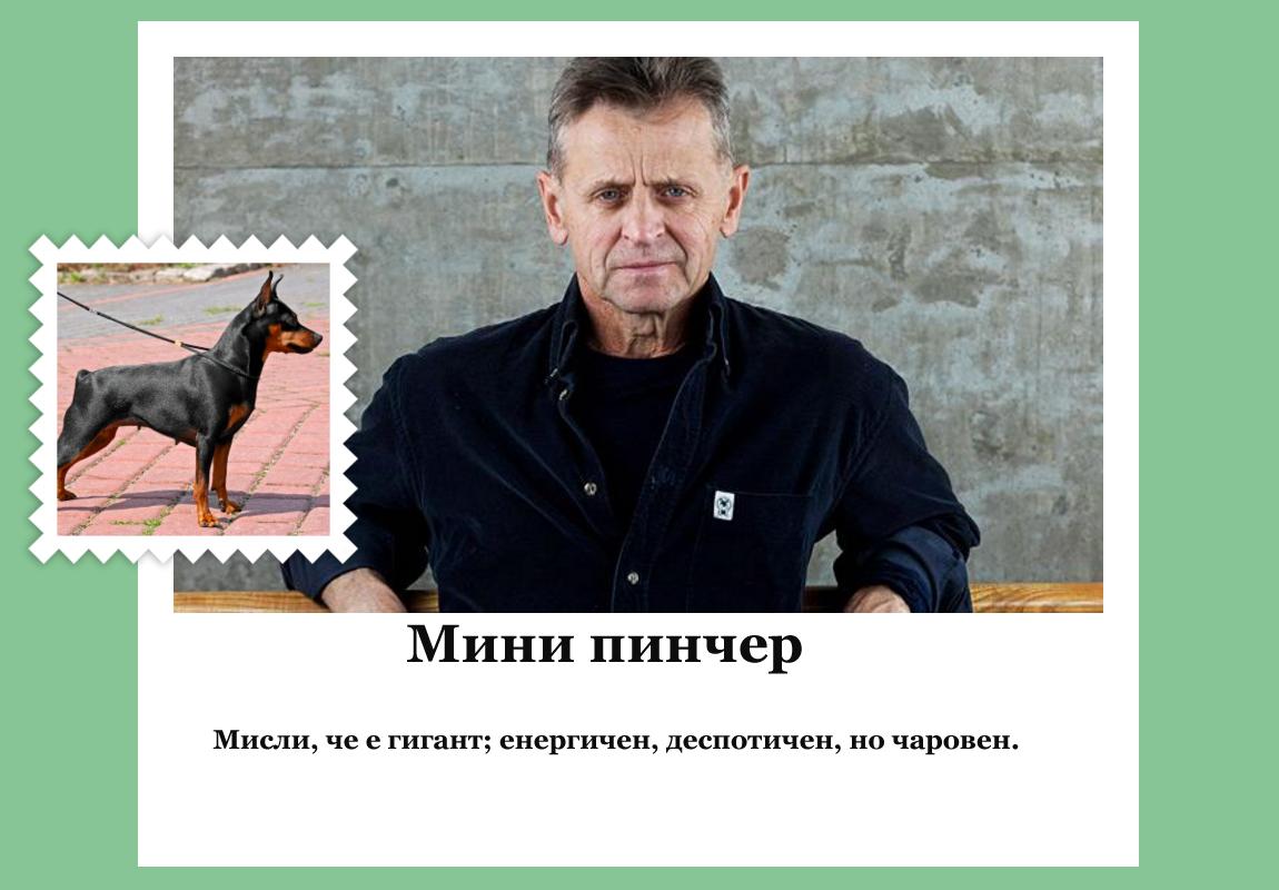 Михаил Баришников (руско-американски танцьор, хореограф и актьор) като мини пинчер.