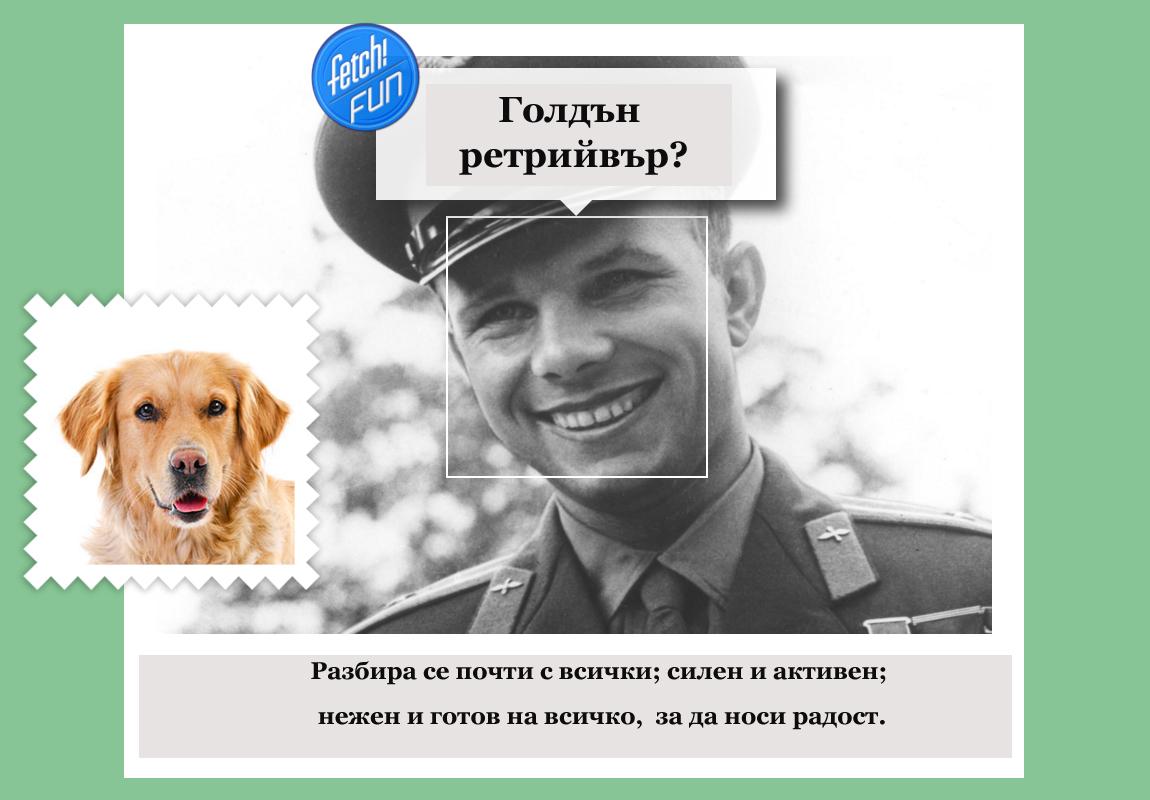 Юрий Гагарин (първият човек в Космоса) е голдън ретрийвър.