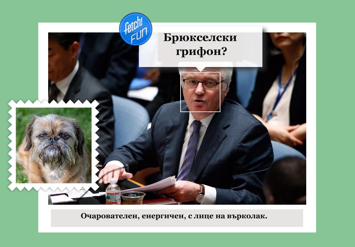 Виталий Чуркин (руски дипломат, постоянен представител на Русия в ООН) като брюкселски грифон.