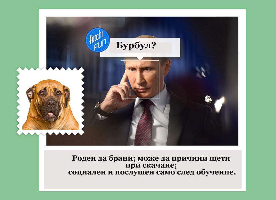 Руският президент Владимир Путин е бурбул.