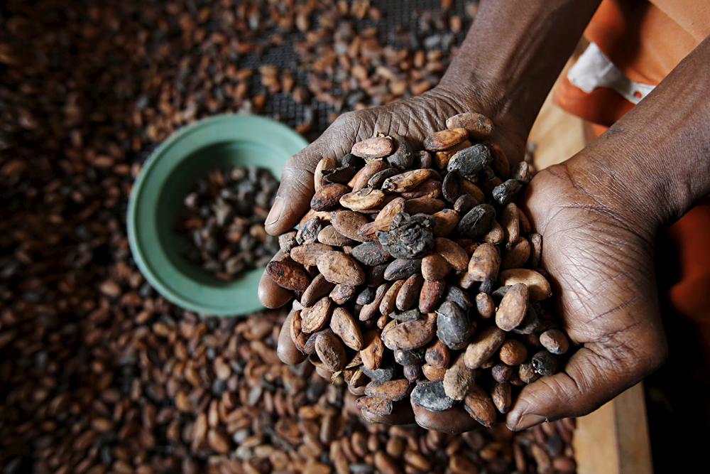 The decision to reduce import duties on cocoa products to zero was taken because of the rising prices of cocoa beans.