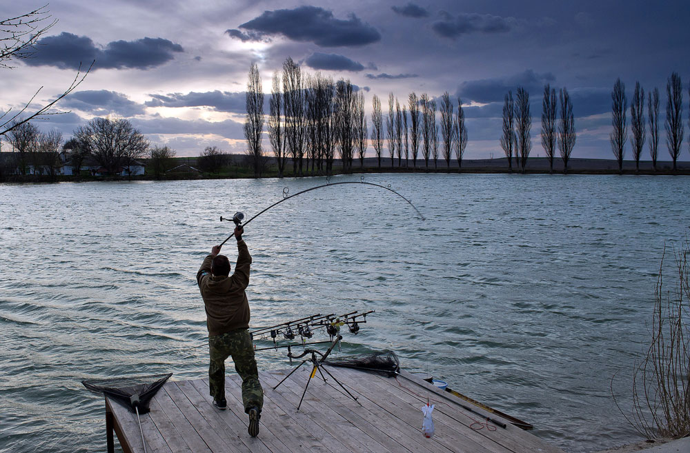 A participant in the 2016 Carpfishing championship at Ukrainka sports pond in the Belogorsky district, Crimea