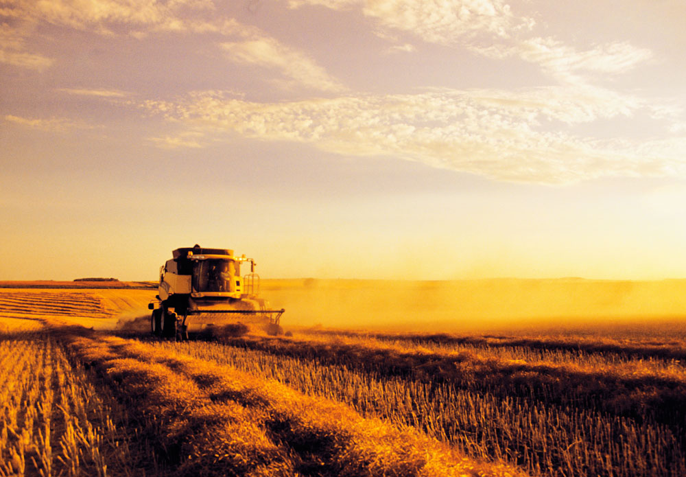 A program to develop unmanned vehicles for agriculture has now been launched in Tatarstan.