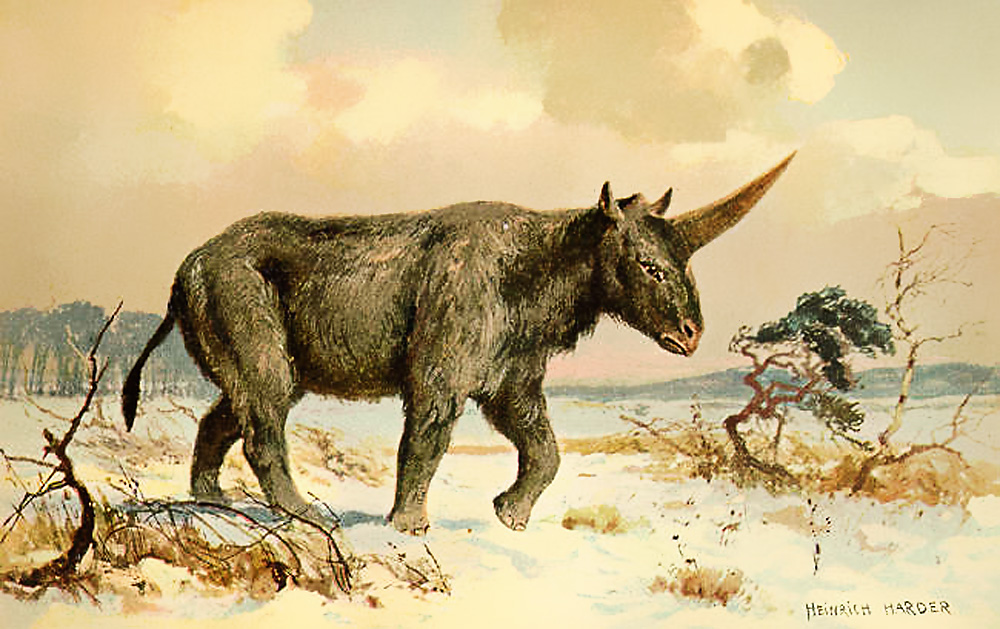 Restoration by Heinrich Harder from ca. 1920.