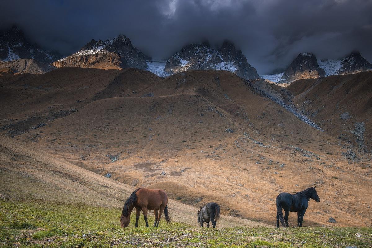 Häufig ziehen die Familien, die seit mehreren Generationen in den Bergen leben, ins Tal, da das Leben in den Bergen zu hart geworden ist, besonders im Winter.