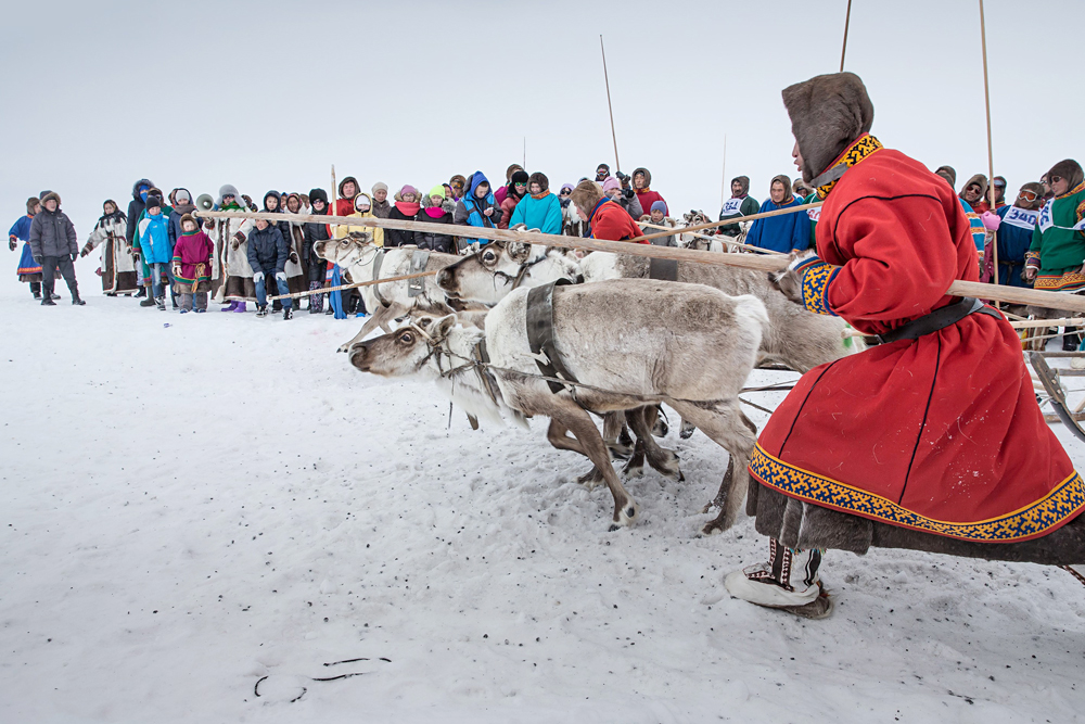 Participants from Nenets Autonomous Okrug are seen during a reindeer race on the Reindeer Herders Day in the Yamalo-Nenets Autonomous Okrug, Russia