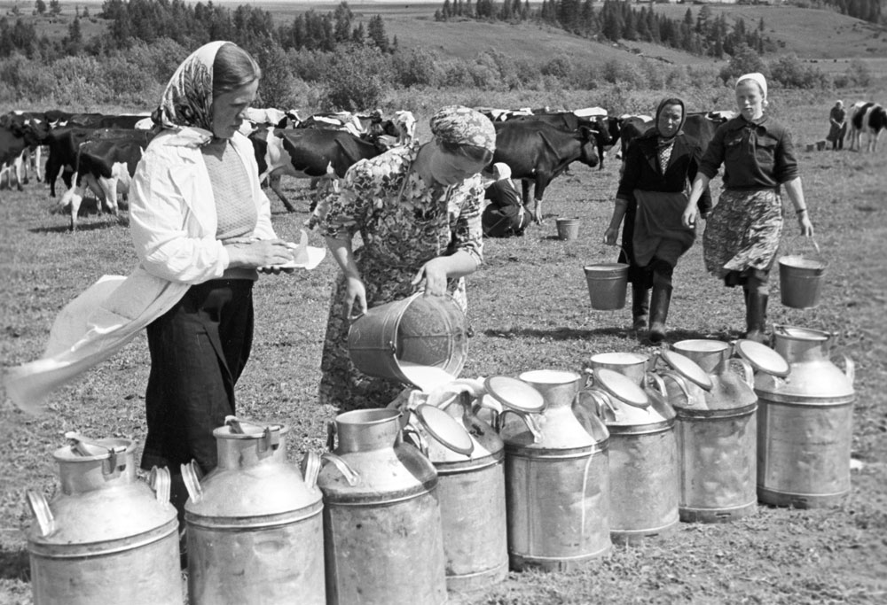 1967 година. Млекарки работят в ТКЗС в Кировска област (Северен Урал).