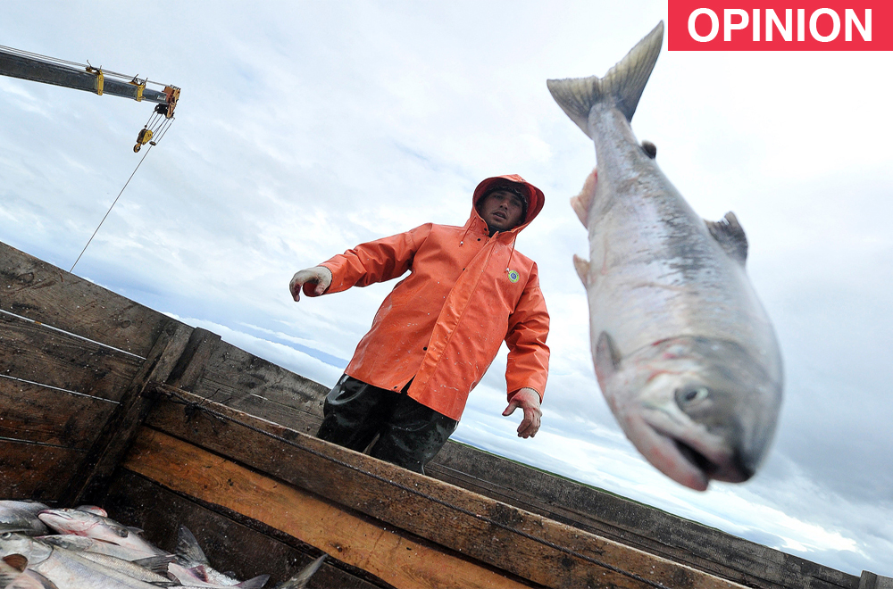China is one of the largest importers of Russian fish products.