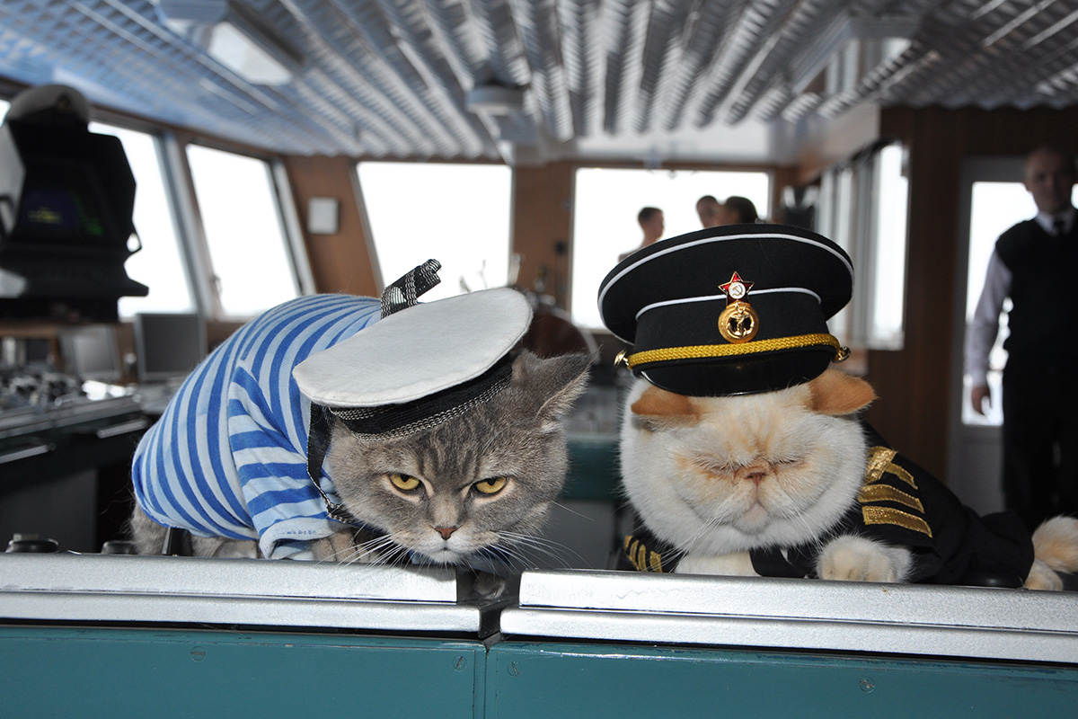 While the captain of the Russian river cruise ship Nikolai Chernyshevsky gives orders, two employees do not follow the commands and continue sleeping.