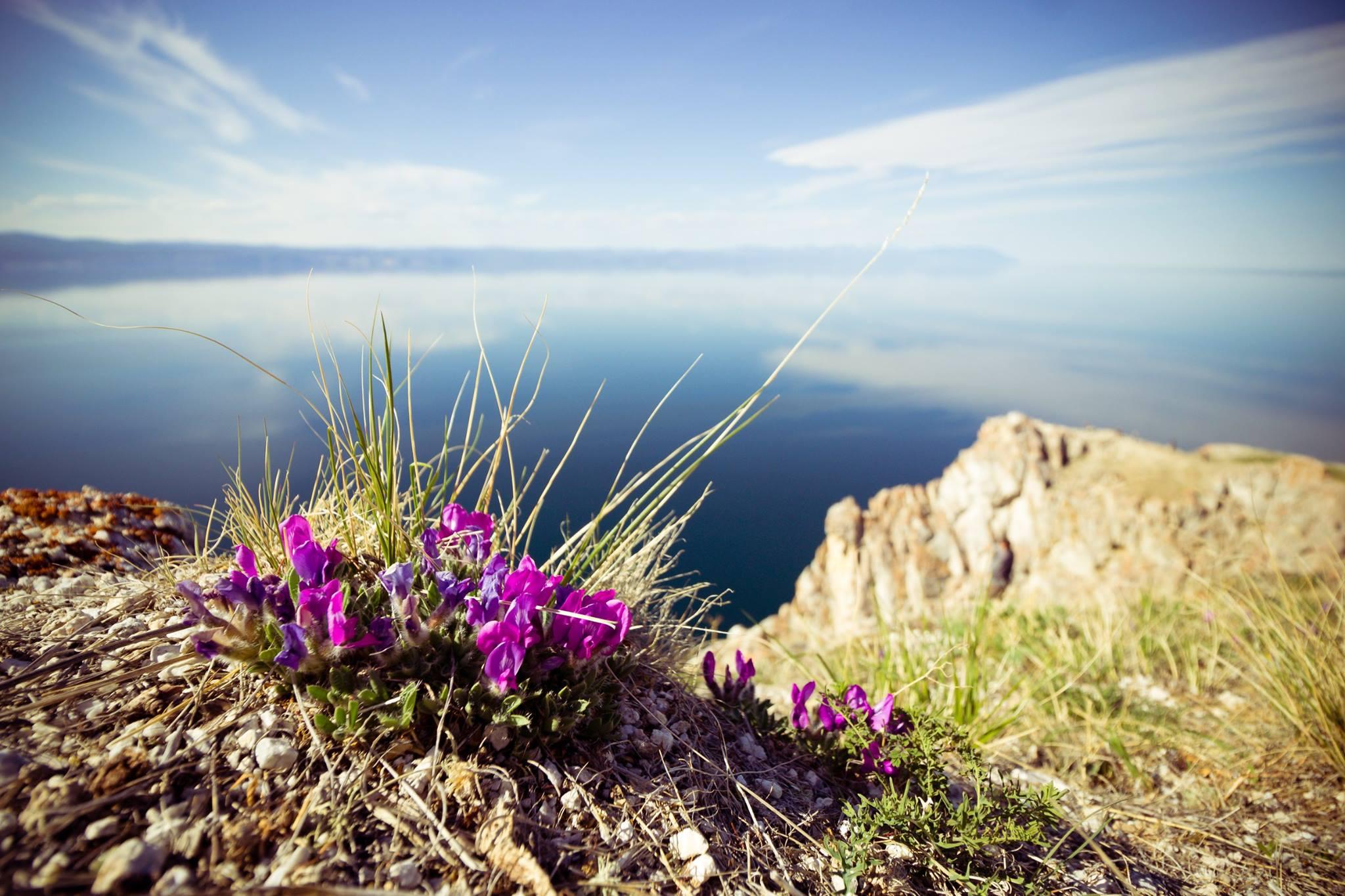 """Na Mongólia, o Baikal é chamado de """"Baigal nuur"""", que pode ser traduzido como """"lago natureza"""". Localizado no sul da Sibéria e facilmente acessível a partir das cidades de Irkutsk e Ulan-Ude, é o maior e mais profundo lago de água doce no mundo."""