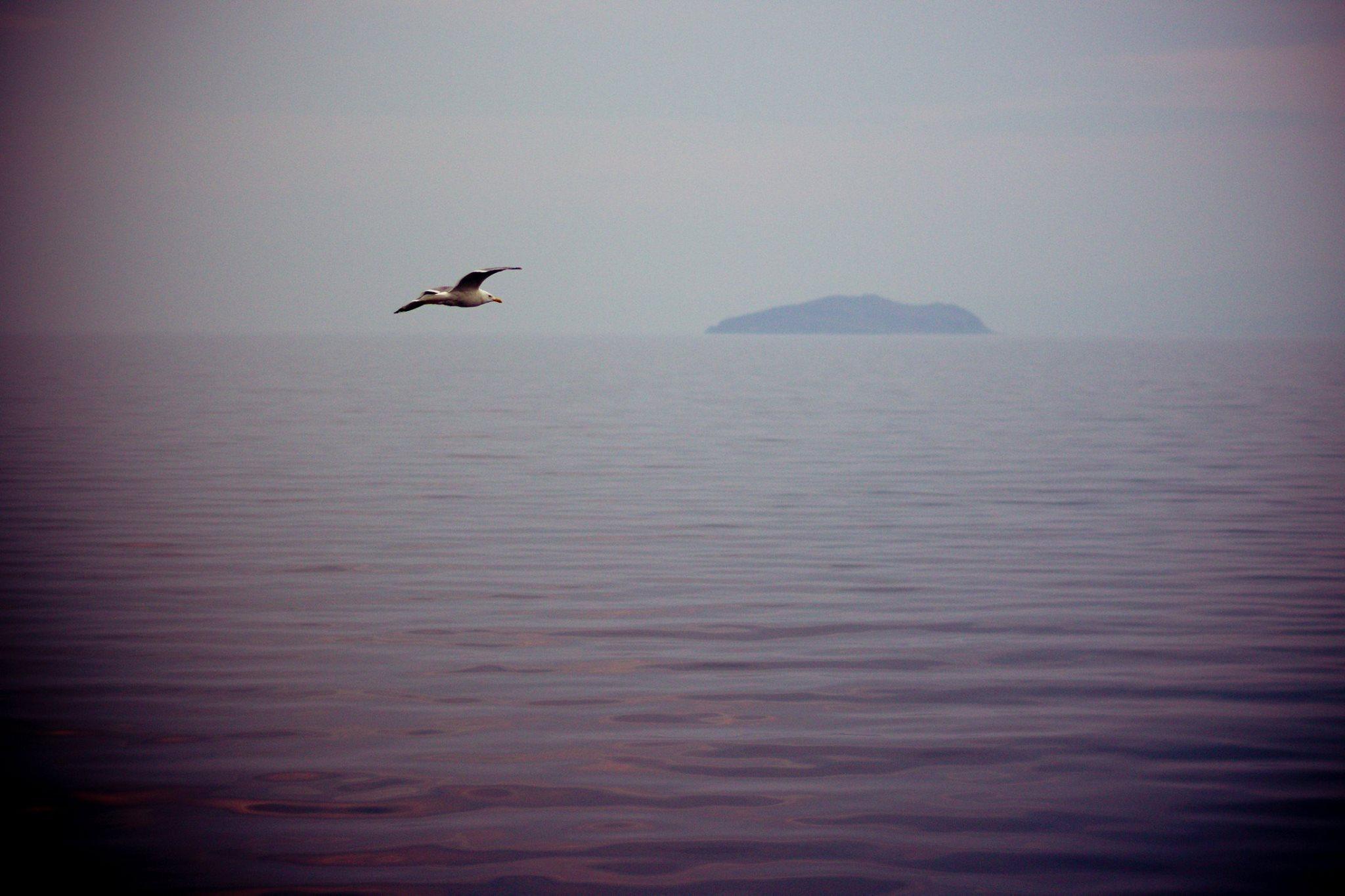 Purtroppo il lago non si salva dall'inquinamento: a un centinaio di metri dalla riva un grande impianto di trasformazione del legno e di lavorazione della cellulosa, molto contestato dalle popolazioni locali, da anni sta mettendo a dura prova l'ecosistema di questo paradiso naturale