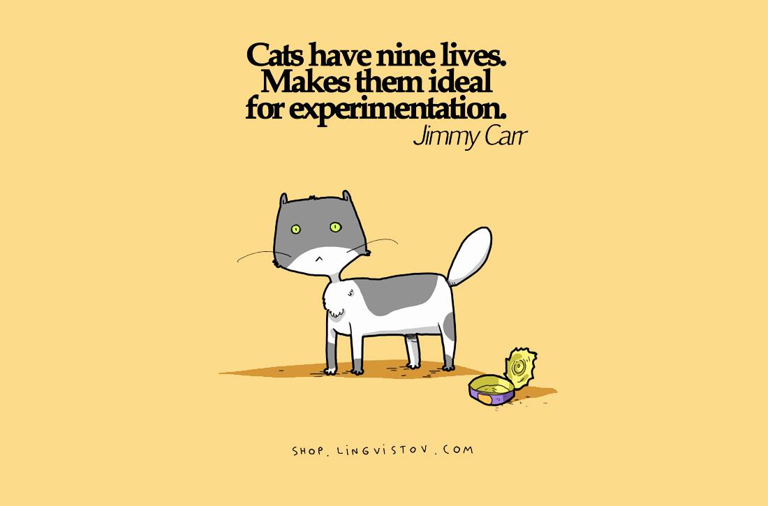 Котките имат девет живота.Това ги прави идеални за експерименти.Джими Кар