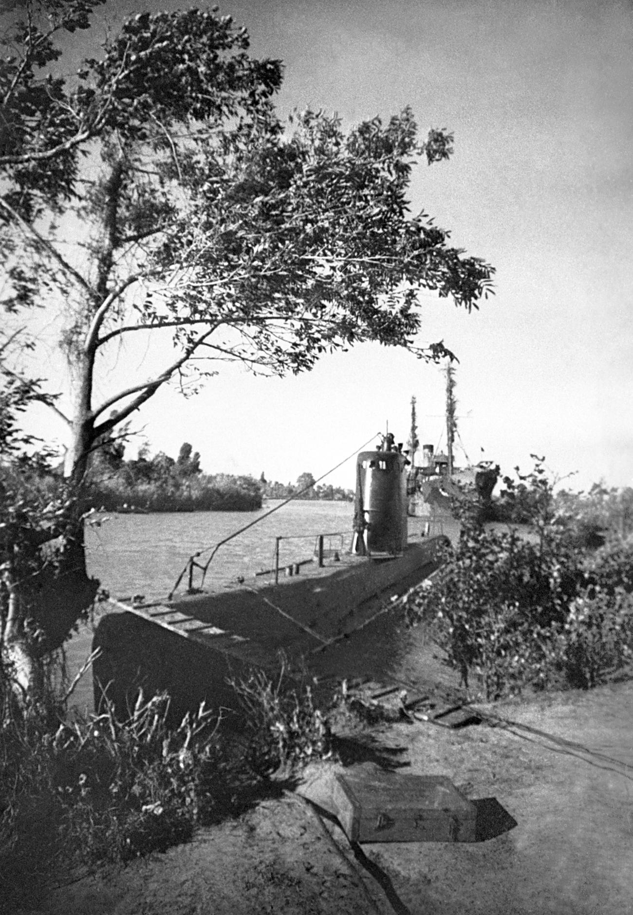 Armada Laut Hitam. Kapal selam Malyutka di muara Sungai Kopi. Sumber: Alexei Mezhuyev / TASS