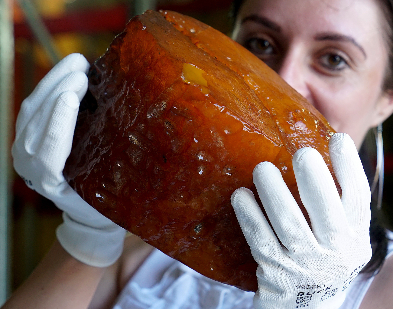 An employee of the Museum of the Kaliningrad Amber Plant shows amber nugget weighing 2.7 kilograms, July 2016. New amber mined on March 6, 2017 weighs 3.2 kilograms.
