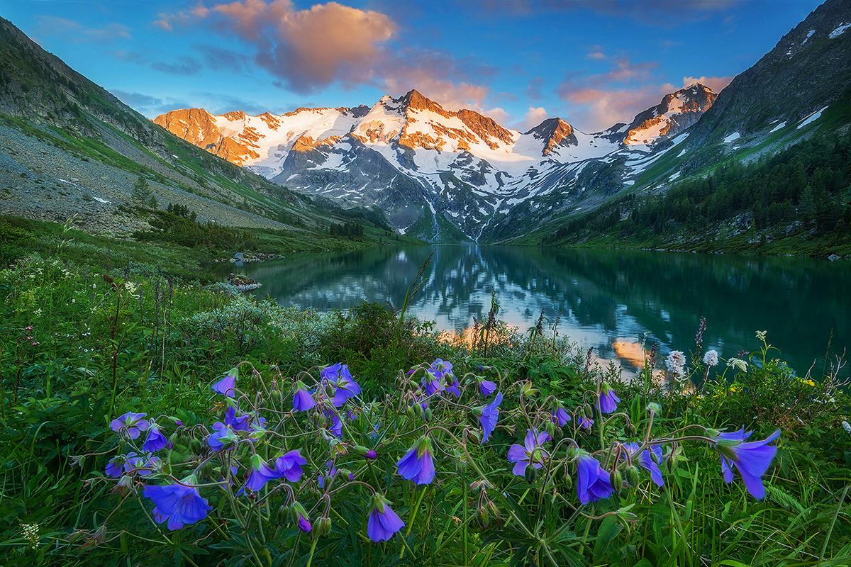 La riserva naturale copre il 20% della Repubblica dell'Altaj