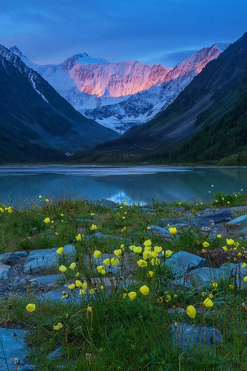 I monti Altaj, vero polmone verde della Terra, sono una delle regioni meno inquinate della Russia