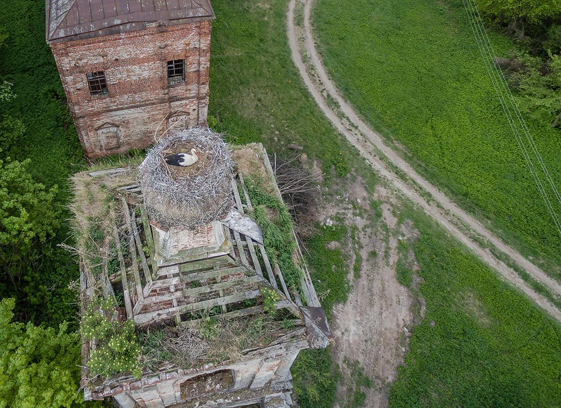 ムレヴィチのズナメンスカヤ教会の鐘楼上に佇むコウノトリ。