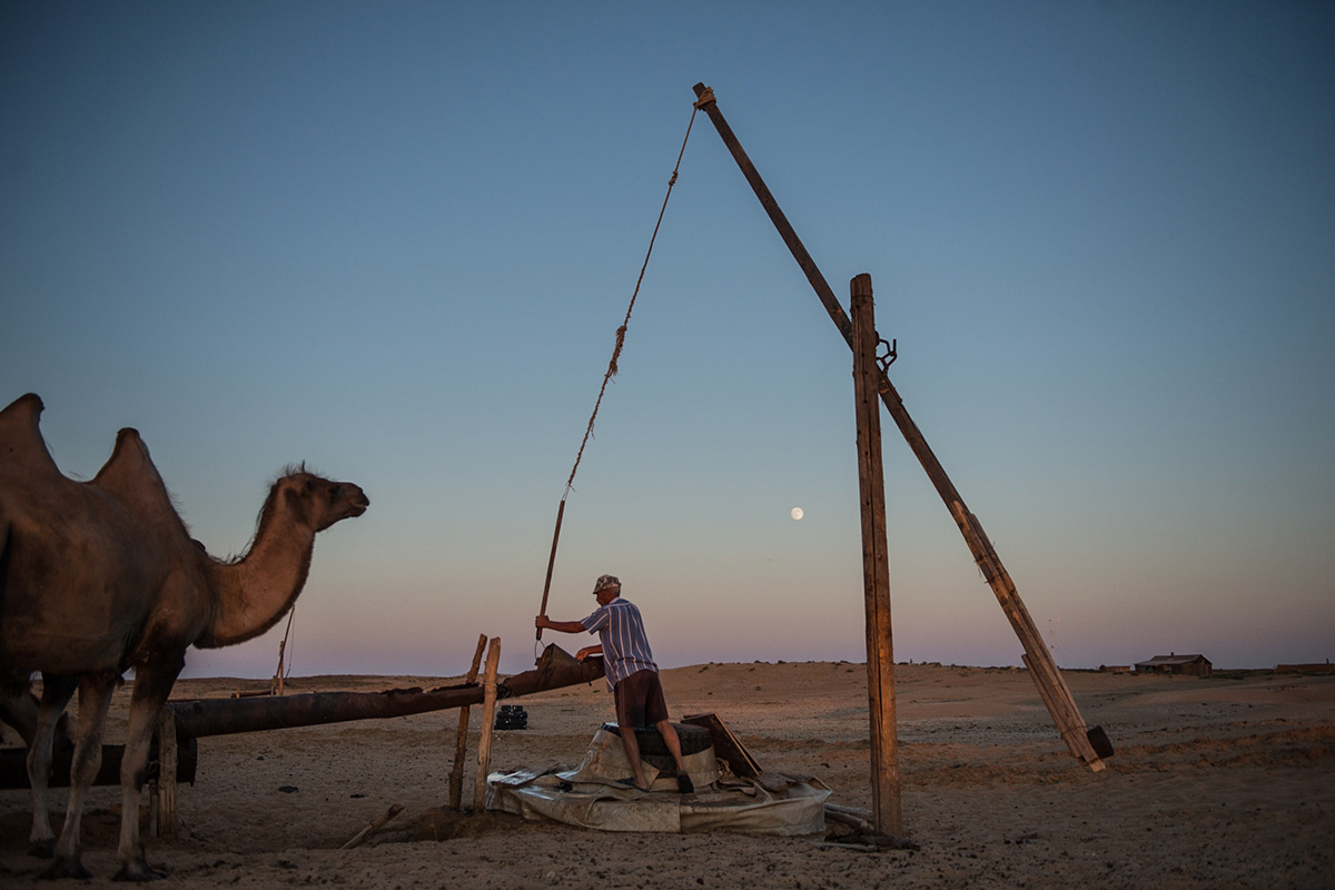 Life in the steppe on the border with Kazakhstan. One family has lived here for more than 20 years, rearing camels alone in the steppe, 80 km from the nearest settlement.