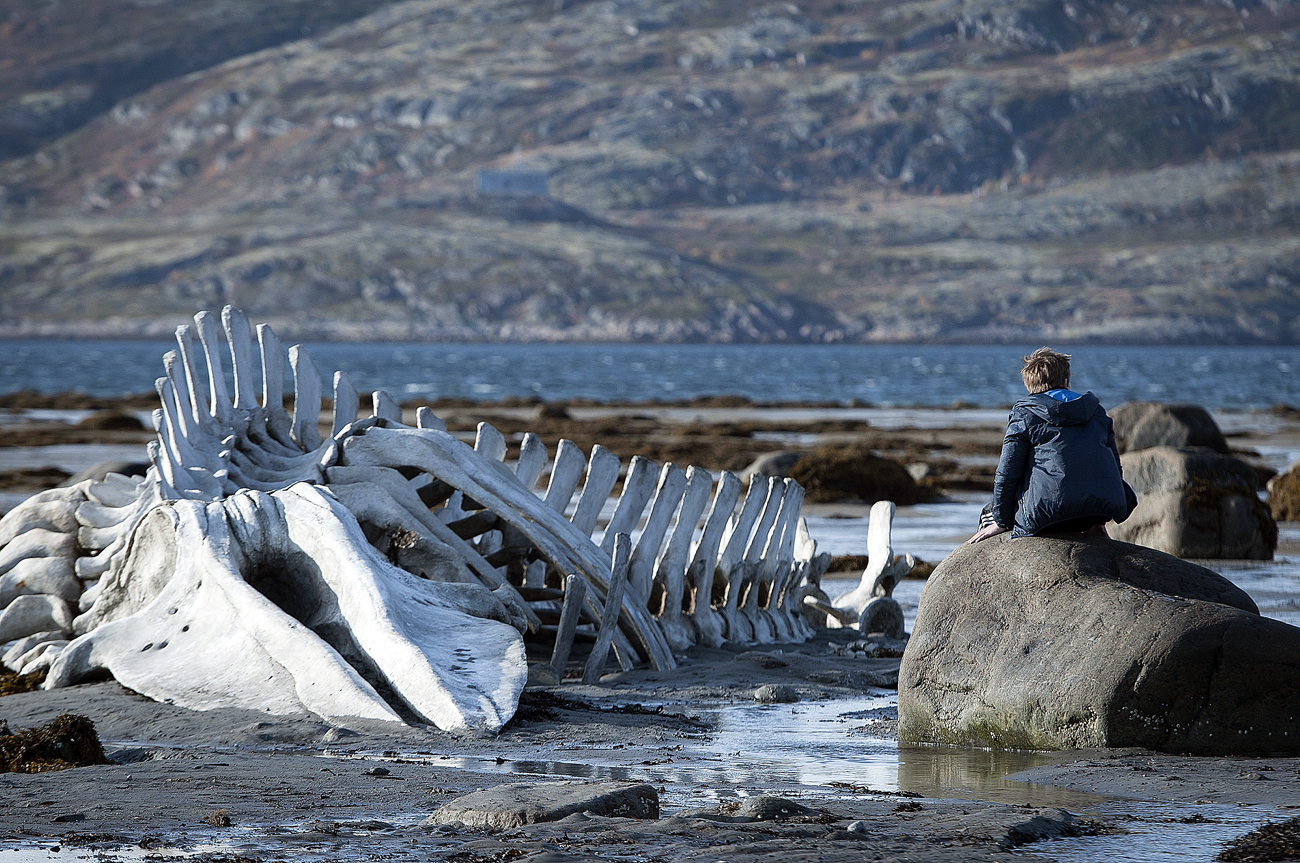 On the set of Andrei Zvyagintsev's movie Leviathan