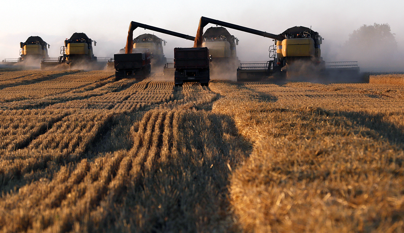 Combine harvesters work on a wheat field of the Solgonskoye farming company near the village of Talniki, southwest from Siberian city of Krasnoyarsk.