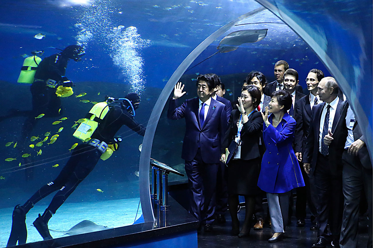 Russia's President Vladimir Putin, South Korea's President Park Geun-hye and Japan's Prime Minister Shinzo Abe (R-L front) visit the Primorye Oceanarium on Russky Island in Russia.