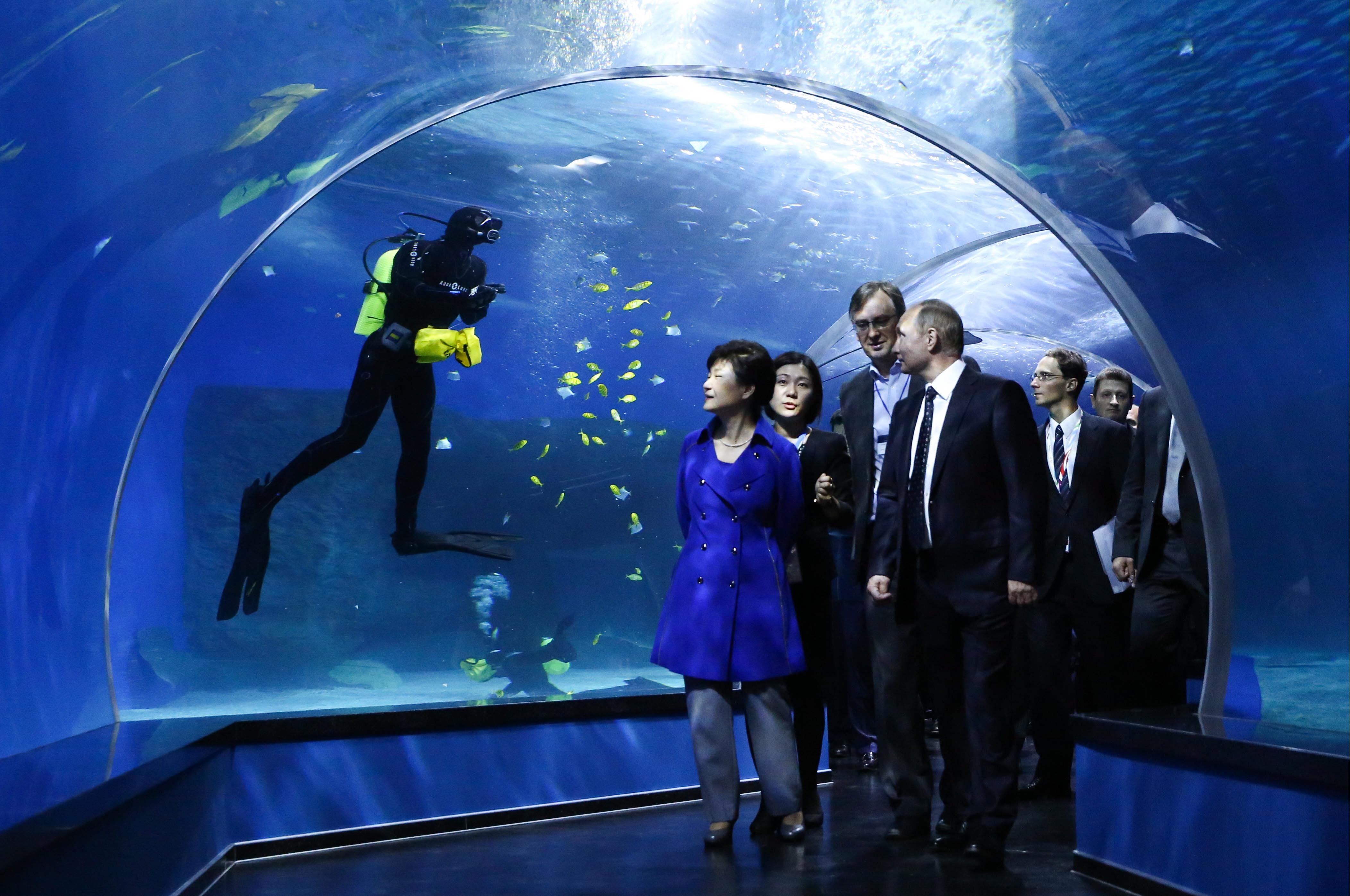 Park Geun-Hye (L) and Vladimir Putin (R).