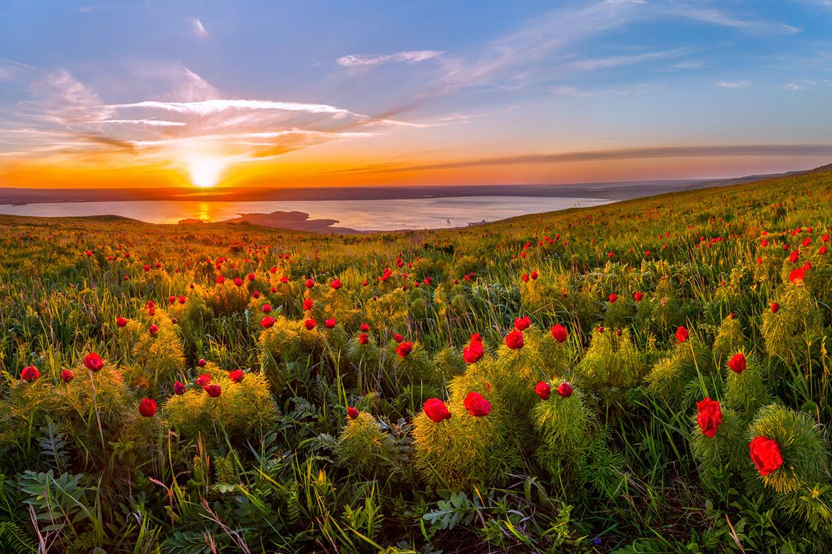 """Natureza virgem. As montanhas de Altai, consideradas por alguns turistas como """"coração verde"""" da Terra, é uma das regiões mais preservadas na Rússia."""