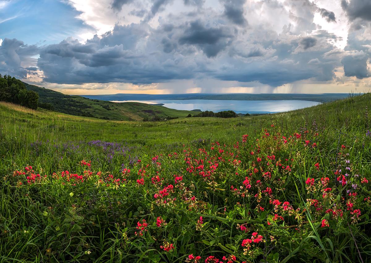 Kontrastno vrijeme. Na Altaju ćete doživjeti vruće ljeto s tepisima cvijeća u cvatu, kao i pravu rusku zimu, snježnu i oštru.
