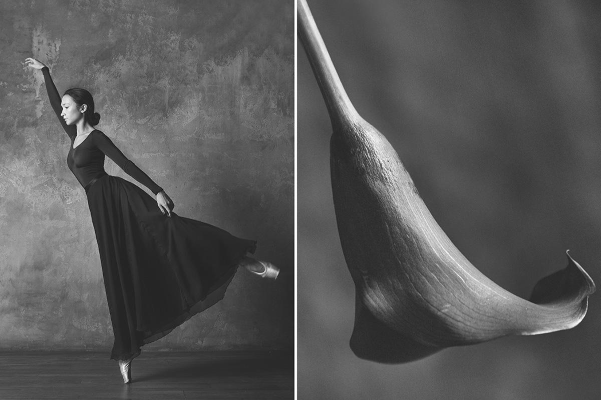 """Nell'immaginario della tradizione europea e asiatica le donne sono sempre state accostate alla figura dei fiori. La fotografa russa Yulia Artemyeva ha realizzato un progetto fotografico dal titolo """"Le ballerine e i fiori"""", nel quale ha accostato grandi étoile della danza a rose, calle e girasoli. """"La natura crea delle forme perfette e io ho tratto ispirazione da lì per cercare di replicarle"""", racconta la fotografa"""