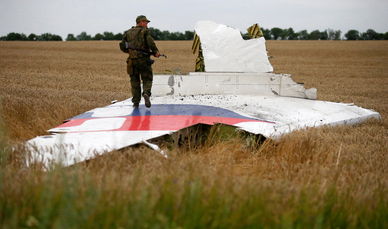 The Malaysia Airlines Boeing 777 plane crashed near the settlement of Grabovo in the Donetsk region, July 17, 2014.