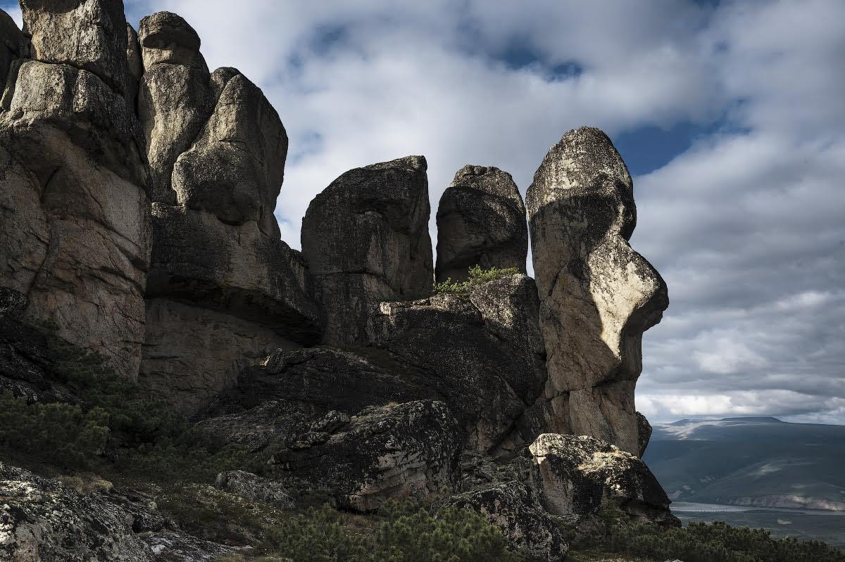 Снимка: Иван Дементиевски