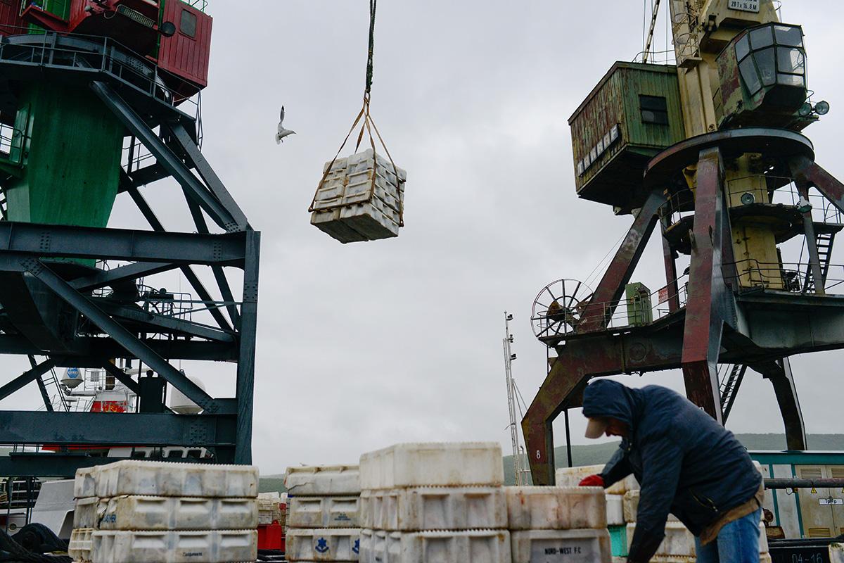 Murmansk dianggap sebagai kota pelabuhan penting yang strategis dan penghubung kunci dalam berbagai sistem transportasi yang berbeda. Singkatnya, kota ini memberikan kontribusi ke Rusia dalam berbagai cara.