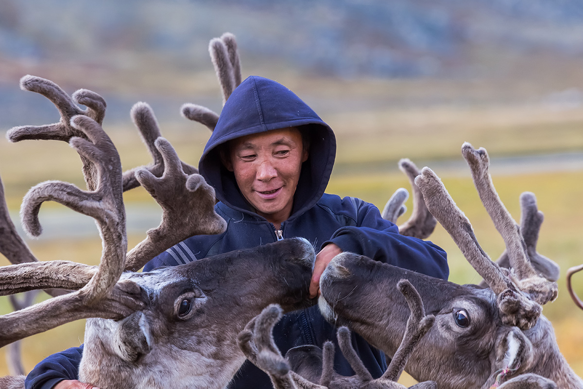 Chasing the reindeer, and following the roe. My heart's in Chukotka, wherever I go. Kirill Uyutnov. See more...