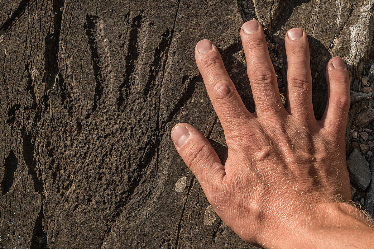 Image on a stone depicting a man's hand from the Bronze Age (around 1500 BC). A rare image for Altai. Among the thousands of petroglyphs here, there are only two images of a hand.