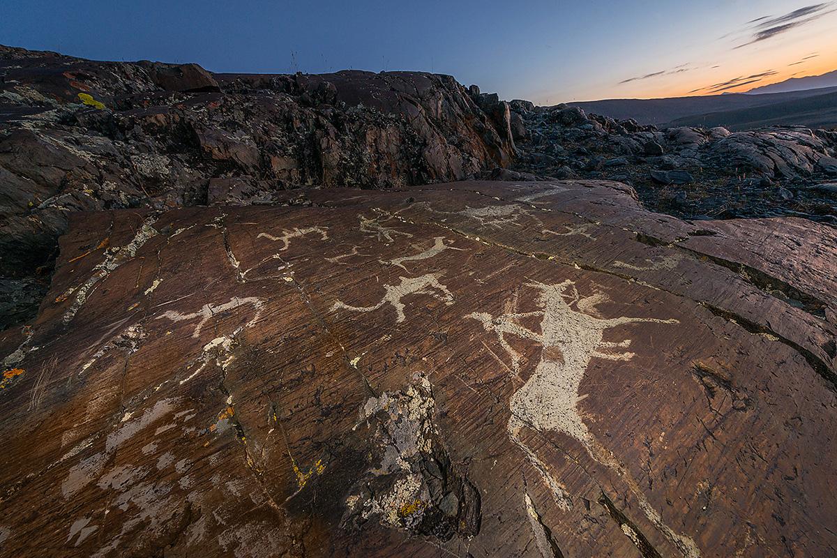 Mais de 200 sítios de petróglifos foram descobertos em Altai. // Cavaleiro, condutores de camelo e animais ungulados (mamíferos cujas extremidades dos dedos são guarnecidas por unhas desenvolvidas ou cascos). Perto do rio Elangash.