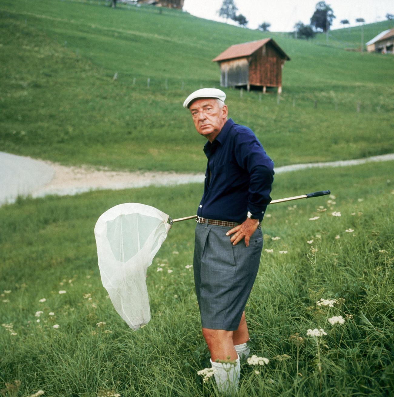 Американскиот писател роден во Русија Владимир Набоков (1899 - 1977) со мрежа за пеперутки некаде во планините на Швајцарија. Фотографирано околу 1975 година.