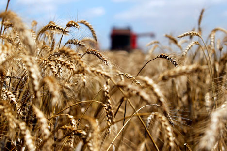 Russia starts grain export to China
