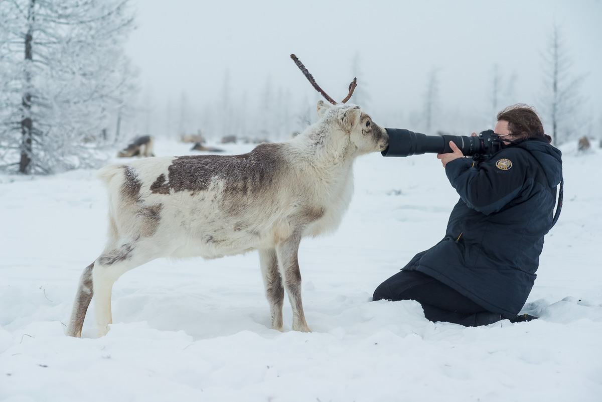 Reindeer herding is the main occupation of the local peoples. Deerskin is used to build yurts and sew clothes, and the meat of the animals is eaten or sold in urban markets.