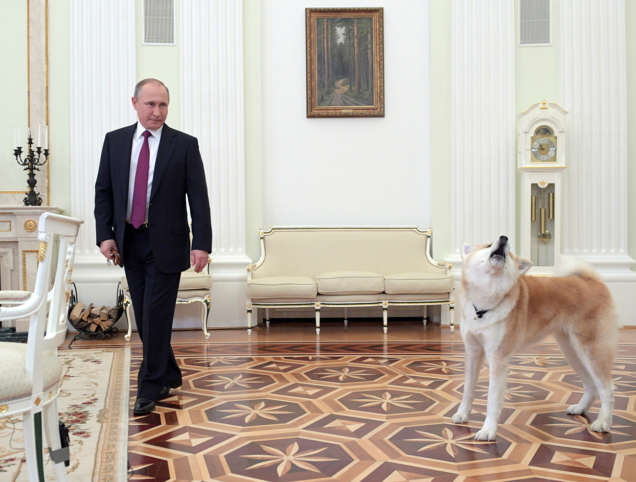 Russian President Vladimir Putin enters a hall with his dog Yume before giving an interview to journalists from Japan.