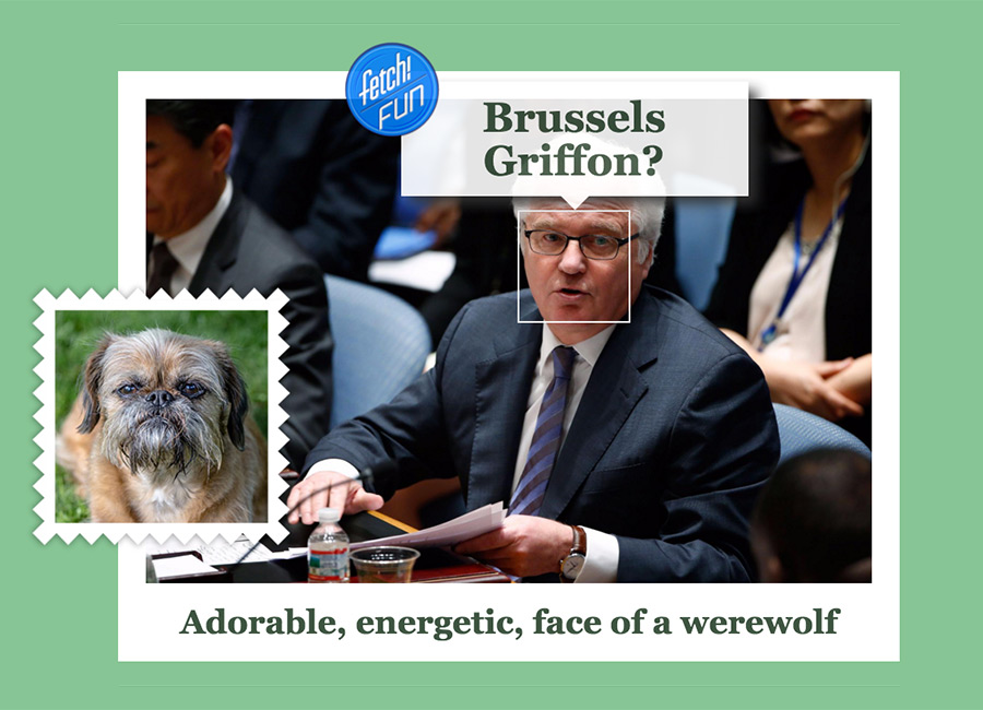 Vitaly Churkin (Russian diplomat who has served as Russia's Permanent Representative to the United Nations) as Brussels Griffon.