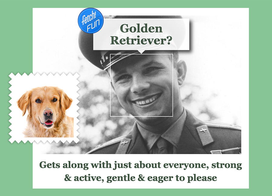 Yuri Gagarin (first human in space) as Golden Retriever.
